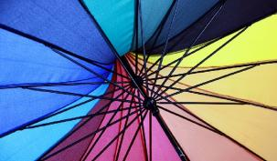 Umbrella or PSC: What's better for public sector contractors?
