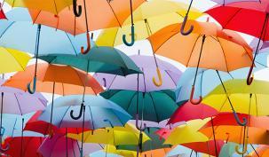 Calls to regulate 'cartel' umbrella companies